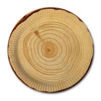 10 Pappteller mit Holzmotiv für ein originelles...