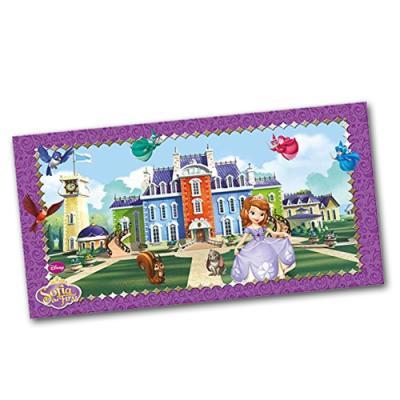 Großes Hintergrundbild mit Motiven für den Kindergeburtstag Sofia die Erste.