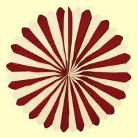 bordeaux-elfenbein Riesenrosette
